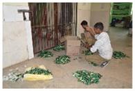 बांका में नकली आवंला तेल की 15 सौ बोतल बरामद