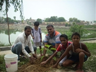 Plant the tree and safe our country