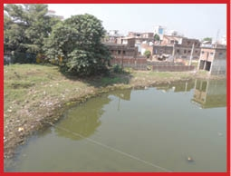 Bypass Chhath ghat not cleaned