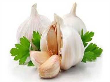 Garlic may help fight against lung infections