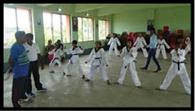 ताइक्वांडो बेल्ट ग्रे¨डग परीक्षा में 105 सफल
