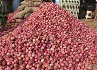 Farmers, traders unhappy with onions inclusion in EC Act