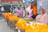 कलश स्थापना संग कल से आरंभ होगा चैत्र नवरात्र