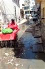 सुलतानपुर में सड़क पर भरा रहता है नाली का पानी