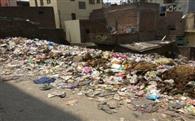 ताजपुर गांव में गंदगी के कारण बुरा हाल