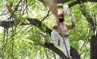 farmer gajendra suicide: Police submits report to Magistrate