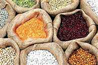 union government directs to state for stock limit of pulses