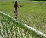 बंगाल में प्रधानमंत्री फसल बीमा के नाम से पीएम का नाम हटाने का फैसला
