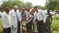 भड़फ पंचायत ने लगाए 125 पौधे