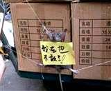चावल चोरी के आरोप में चूहे को मिली सजा