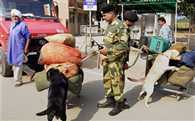 After terrorist attacks in Punjab to remain alert in Rajasthan