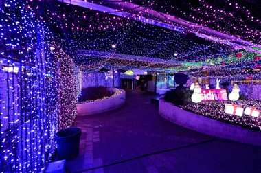 1.2 million Australian Christmas lights set record