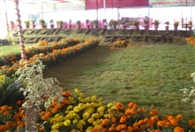 The first day of the Festival adorned farm shops