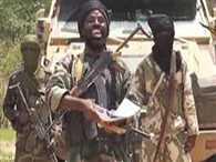 Boko Haram extremists killed 41 people