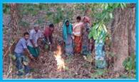 महुआ के लिए जंगलों में लगाई जा रही आग