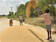 जिले में धान की खरीद को धक्का