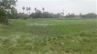 Gopalpur panchayat needs proper development