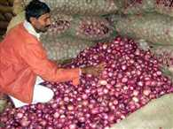 Government is in confusion over stock of onion