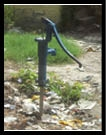 यहां लोग पी रहे जैविक प्रदूषित जल
