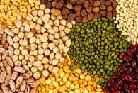 Tussle between BJP and Congress on Pulses