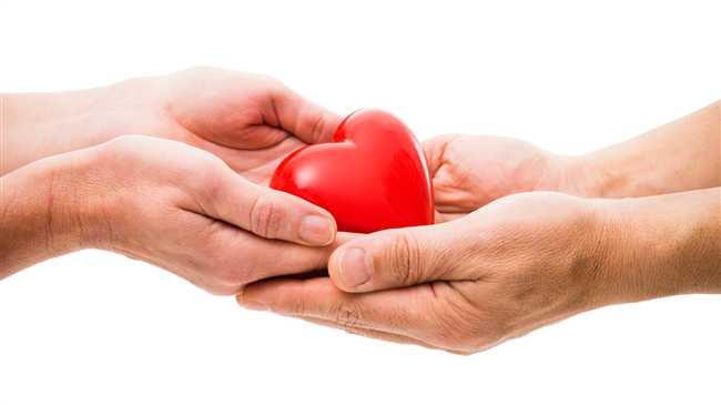 Love Marriage ,Organ Donation ,Road Accident ,Brain Dead,परिवार,मैरिज,सड़क दुर्घटना,पति,मौत,अंगदान