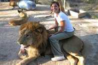 A Zoo Where Yo Can Enjoy Ride Of Lion