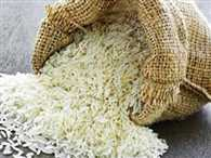 Government will purchase thirty million tonnes of rice