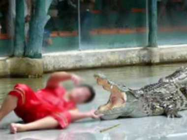 Youth fought with crocodile to save Goat