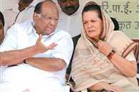 rahul and his team wants to dominate on ncp: sharad pawar