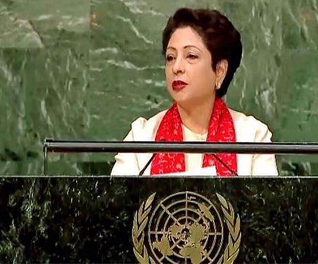 Pakistan to inform UNSC over India' s ' surgical strikes'