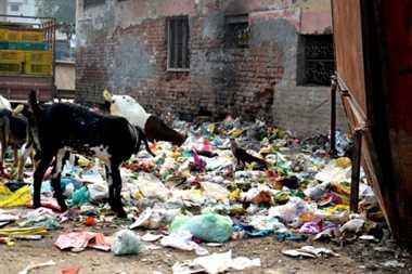 Clean Haridwar Abiyan