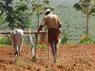 Farming is not attracting foreign investors