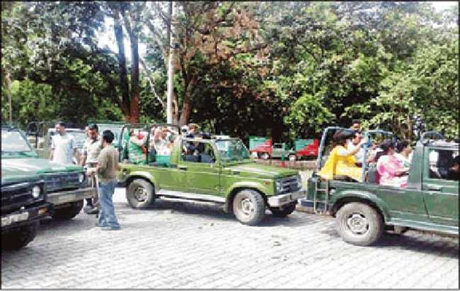 Tourist Reached at Rajaji Park