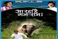 elephant' hounding of UP CM Akhilesh yadav, police involved in the investigation