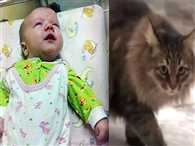 Masha the Hero Cat Stray cat saves Russian baby abandoned in freezing hallway by keeping him warm
