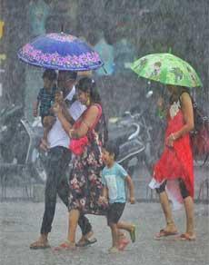देखें तस्वीरें: पंजाब के कुछ जिलों में मौसम ने ली करवट, जमकर बरसे बादल