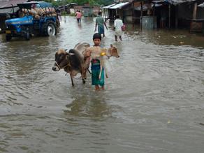 बाढ़ से बिहार में बढ़ी परेशानी, फिर भी चल रही है कुछ यूं जिन्दगानी, देखें तस्वीरें...