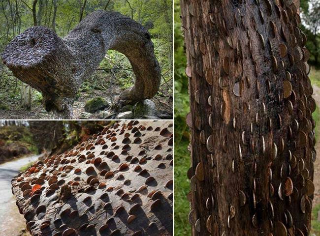 कौन कहता है कि पैसे पेड़ पर नहीं उगते, जरा इन तस्वीरों को देखिए