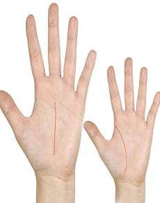 जानिए आपके हाथ की कौन सी रेखा आपके बारे में क्या बताती है