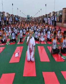 अंतरराष्ट्रीय योग दिवसः देखें, राजनेताअों का योगासन