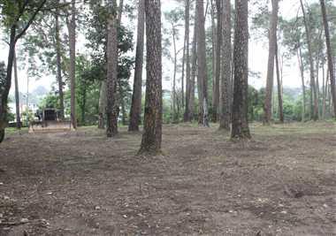 संरक्षित वनक्षेत्र से हटाई जाएंगी घुमंतू जाति
