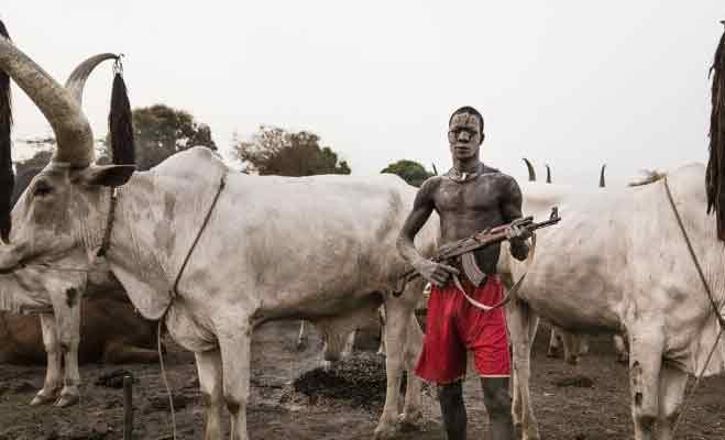 सूडान में गायों की रक्षा के लिए जान लेने-देने में आगे हैं इस जनजाति के लोग