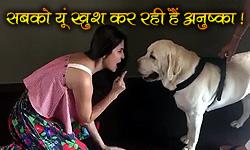 जब अनुष्का ने कुत्ते के लिए गाया गाना देखें मजेदार वीडियो