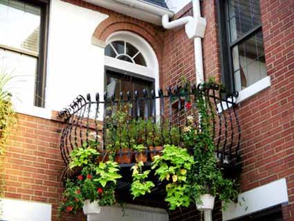 Green Balcony : Inextlive