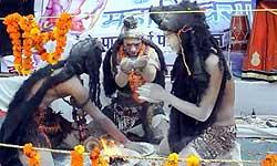 महाशिवरात्रि 2017 सेलीब्रेशन में भोलेनाथ ने भभूत से खेली होली