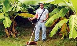 लाखों कमाने वाला ये IT Manager खेती करने हर हफ्ते जाता है अपने गांव