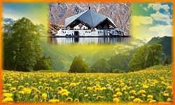 'कश्मीर' से भी ज्यादा खूबसूरत है हेमकुंड साहिब, खुद देखें ये नजारा