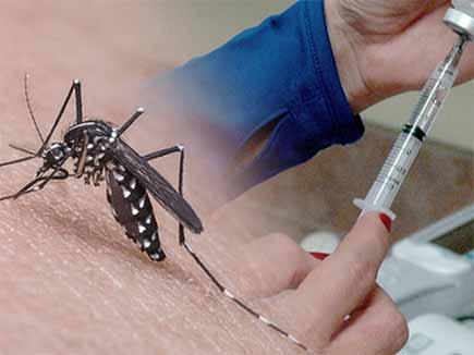 दुनिया का पहला डेंगू वैक्सीन बनकर तैयार