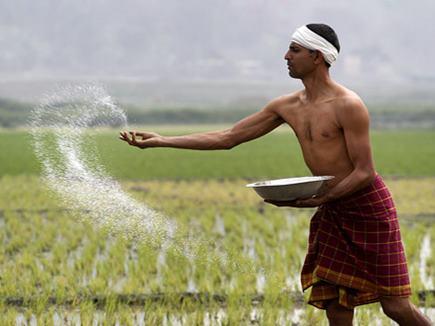farmer dbt news 11 10 17 11 10 2017