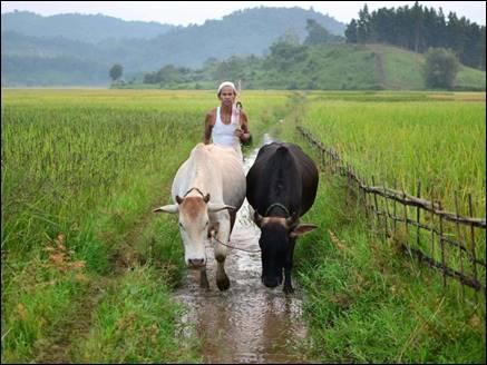 किसानों को तोहफा, कर्ज के ब्याज पर मिलेगी ज्यादा छूट